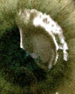 20120606-134307.jpg